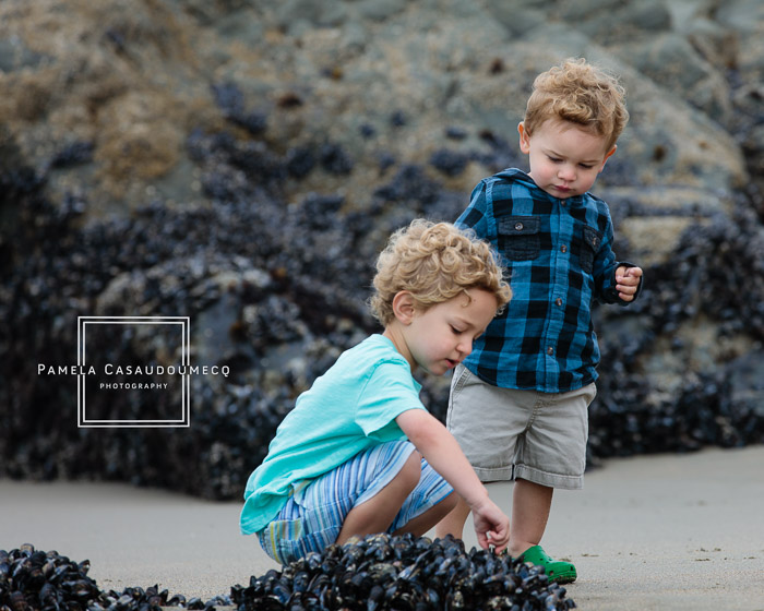 Brothers exploring shells on Baker Beach